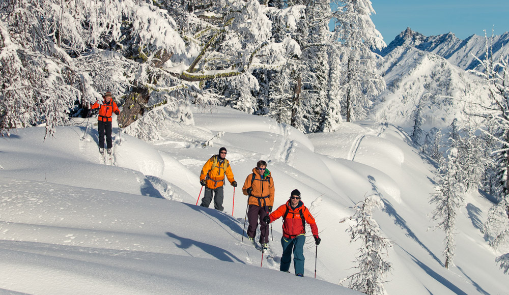 Cat-Assisted Ski Touring